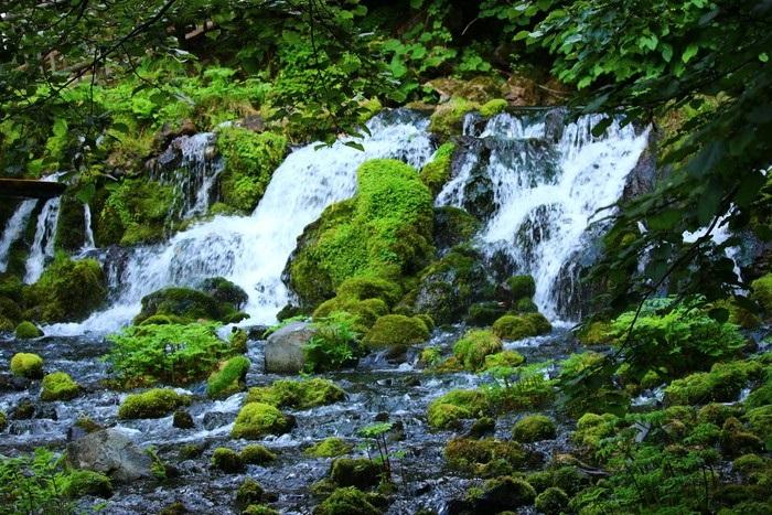 Nước suối từ các nguồn nước ngầm sâu trong lòng đất